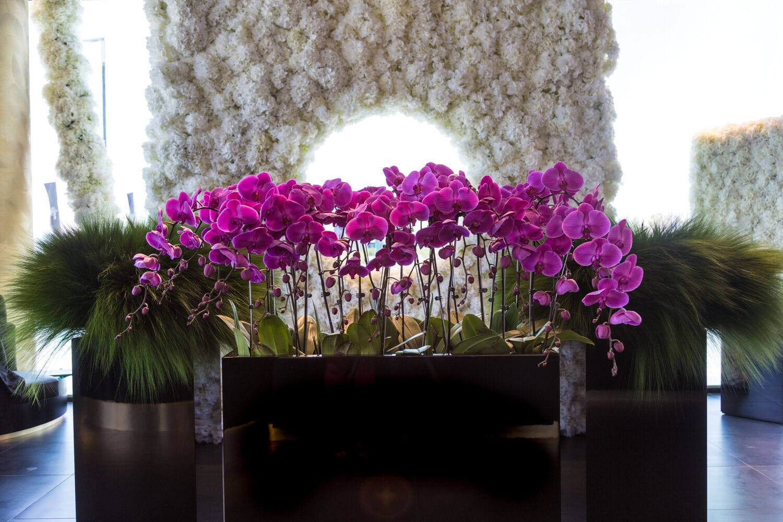 Insided3 a look at dubais most enchanting flower shop